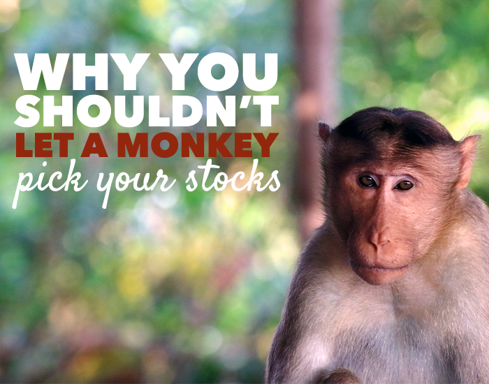 How to pick your stocks -- my strange and enlightening experiment.